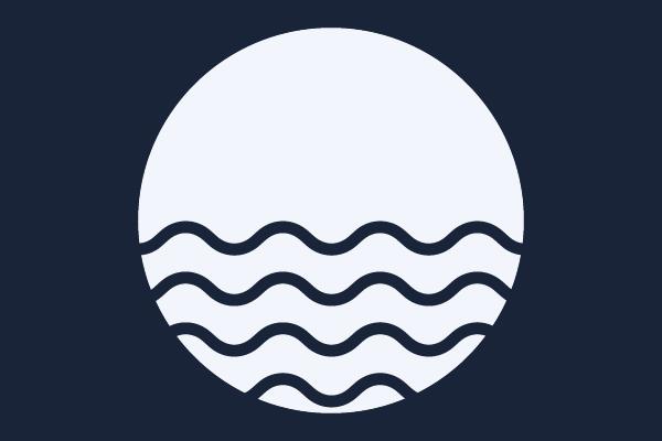 Blue Ocean Strategie: Der Guide (2019)